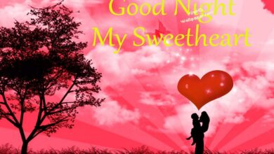 Photo of Good night message to a friend – Best wishes